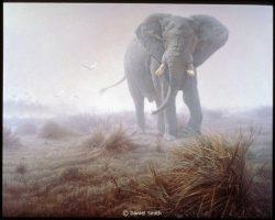 Denizen of the Mist