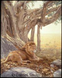 Savanna Sanctuary